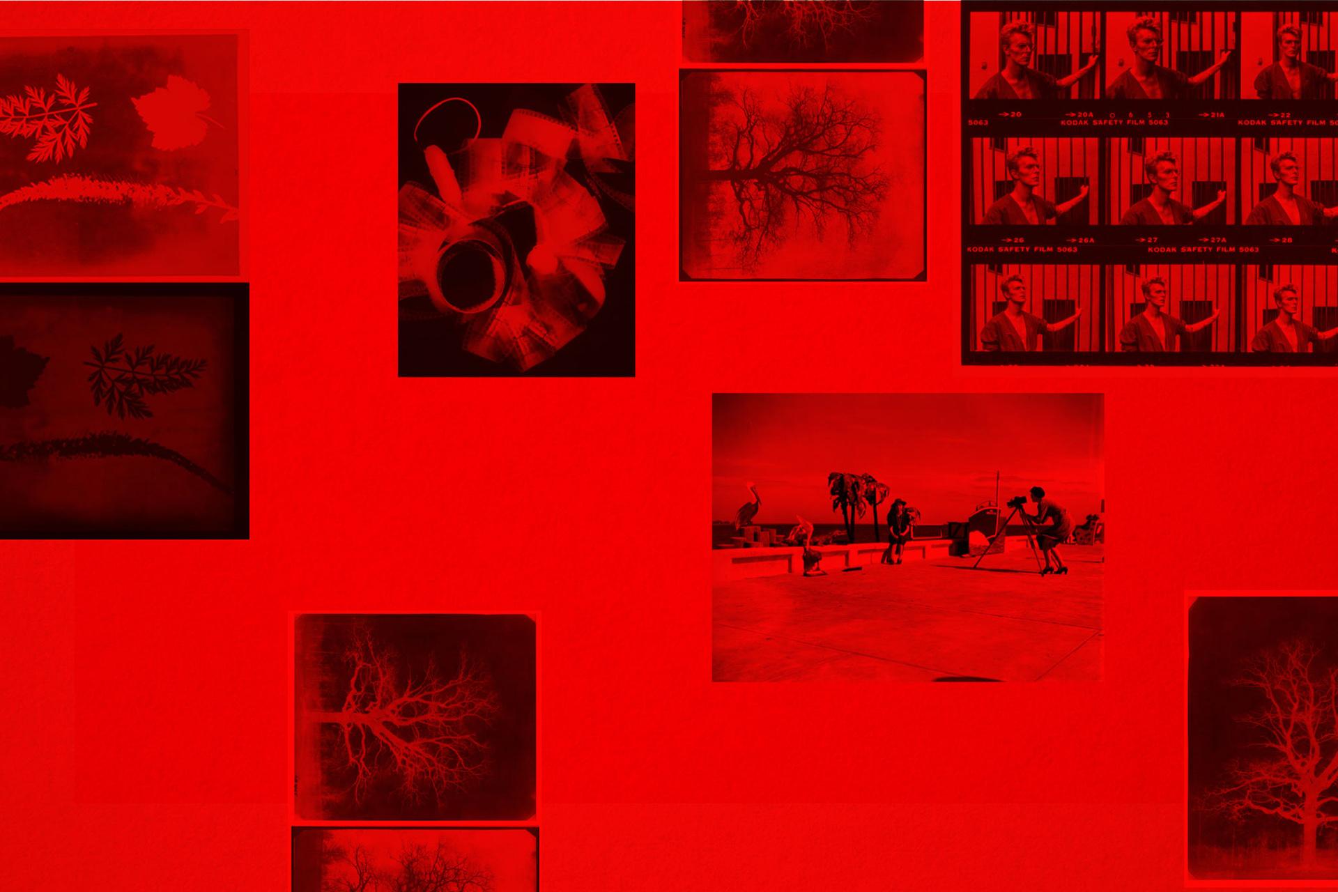 Corso di fotografia analogica