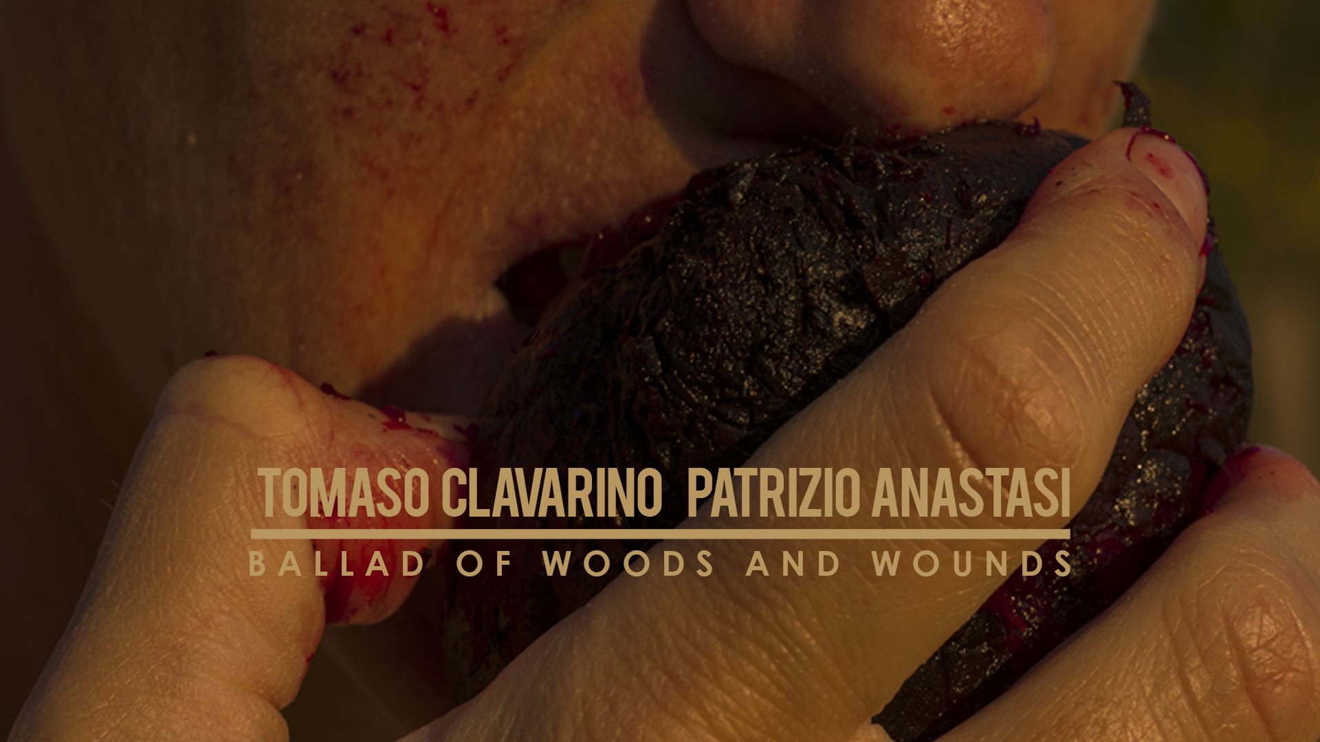 Tomaso Clavarino, Patrizio Anastasi - Ballad of woods and wounds